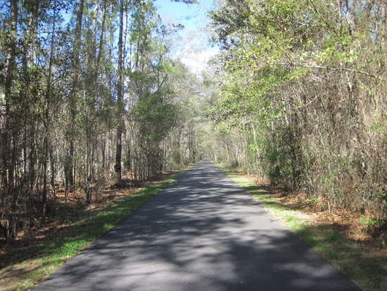 Tallahassee-St. Marks Historic Railroad State Trail